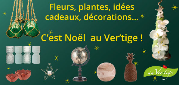 Flyer Noël Au Ver'tige